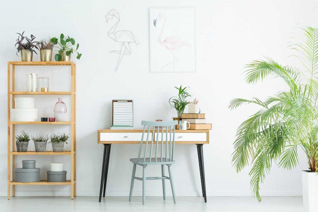 aufgeräumtes Büro mit Pflanzen.